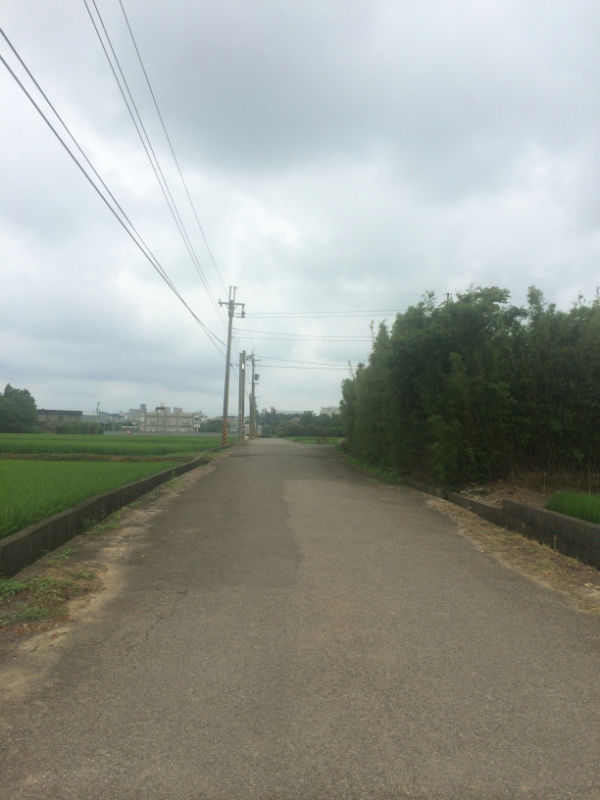 楊梅大坪數投資建地,桃園市楊梅區民生路