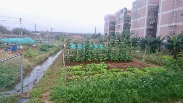 梅高路~資材室+曬穀場,桃園市楊梅區梅高路