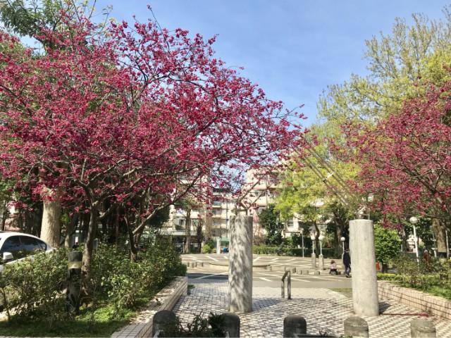 薪家坡面公園3房美寓,桃園市楊梅區湖山街
