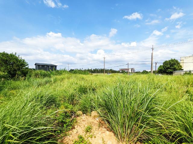 觀音低總價農地,桃園市觀音區大湖段