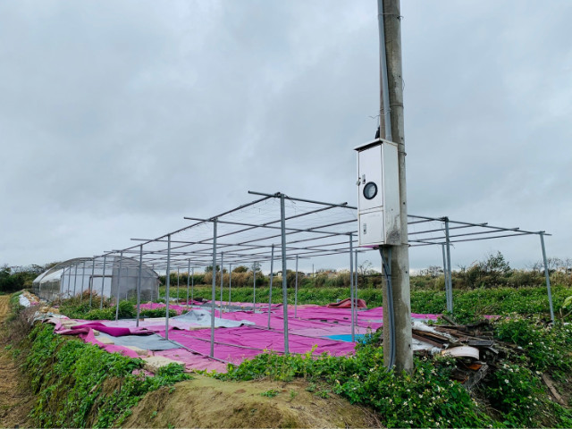 新豐117縣道旁溫室,新竹縣新豐鄉福興段
